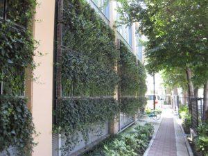 壁面緑化-1