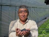 (有)於多屋農場 部長 西村方孝さん